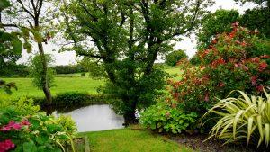 Summer - lush garden with pond