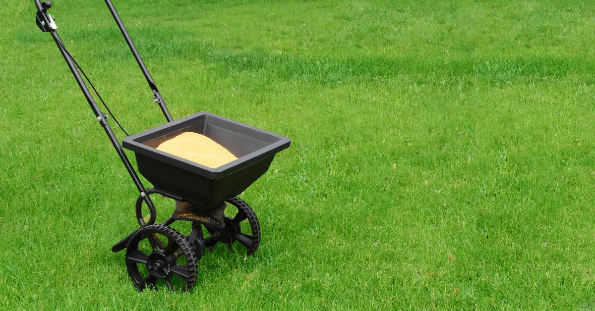 Fertilize your lawn to prepare for fall